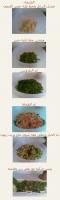 كيفية عمل التبولة بالصور